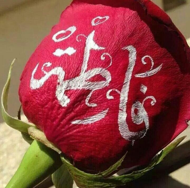 Hazrate Zahra Alphabet Images Islamic Art Calligraphy Instagram Picture Quotes