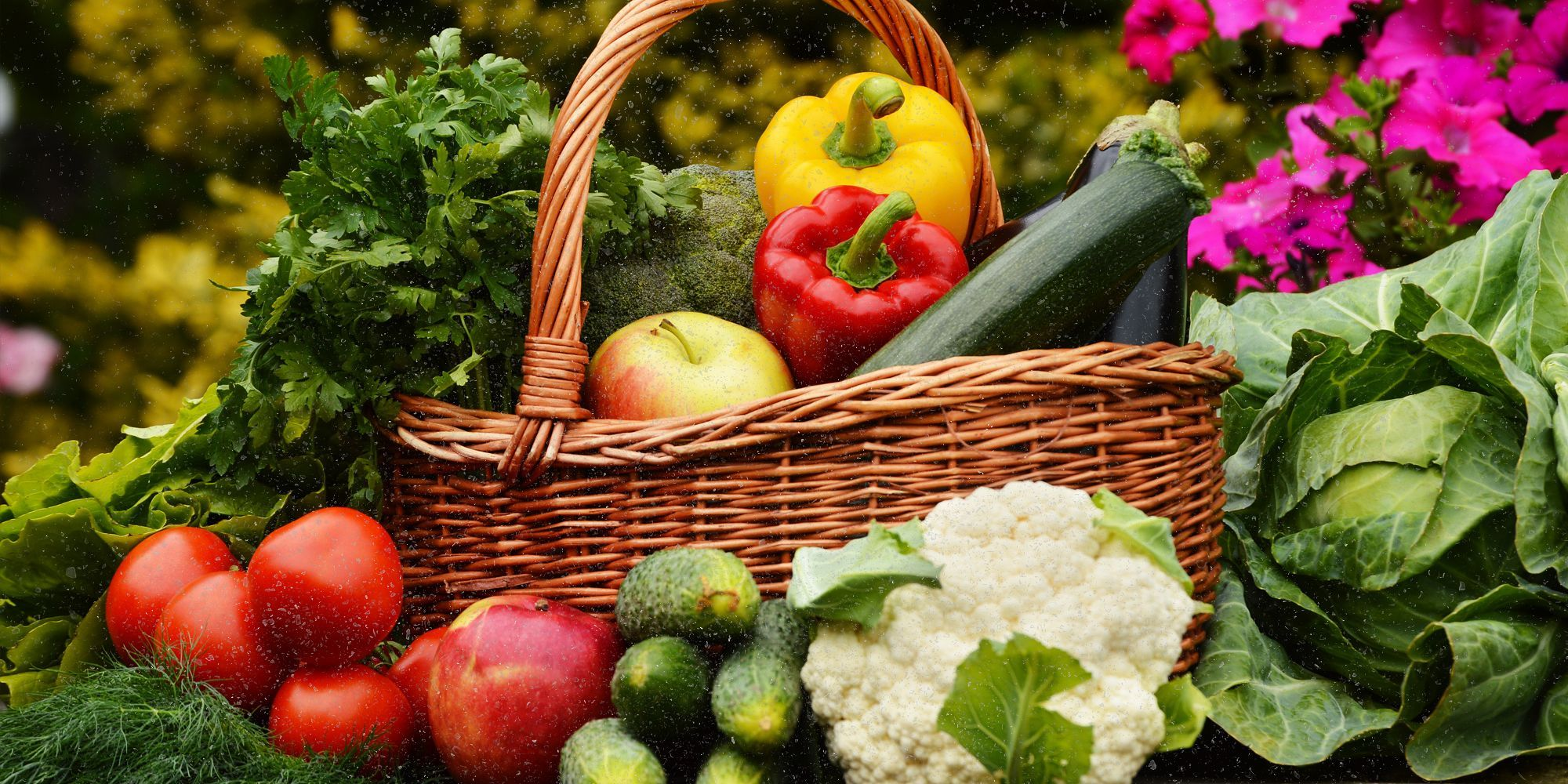 Fall Vegetables You Can Start Growing Today Real food