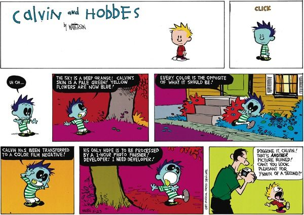 Image result for calvin and hobbes photo negative