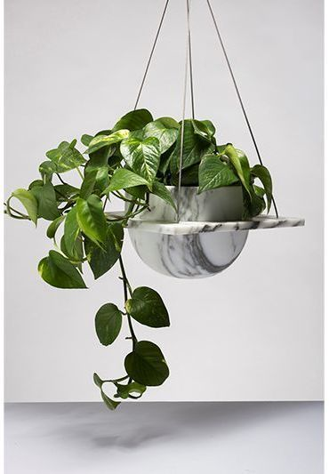 Roberta Marble Hanging Plant Pot Hanging Plants Indoor Pothos