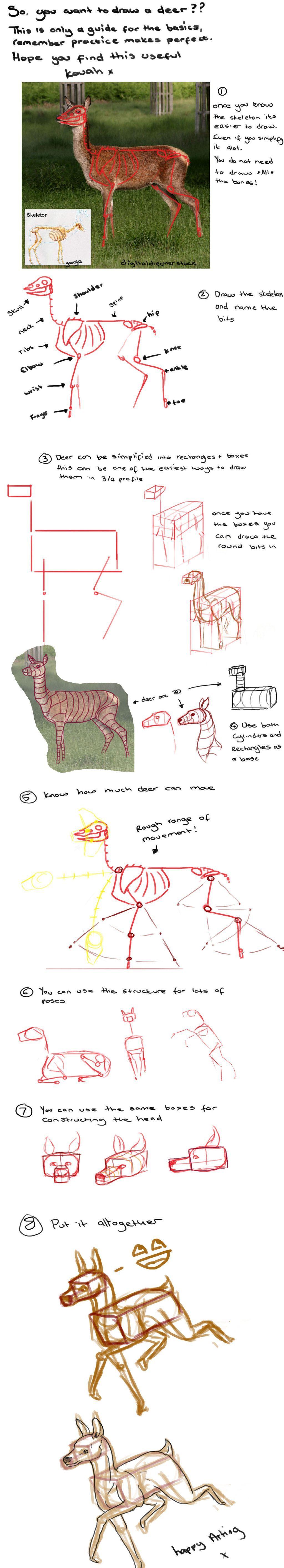 Tutorial Basico De Ciervos Por Kovah En Deviantart In 2020 Animal Drawings Tutorial Drawing Tutorial