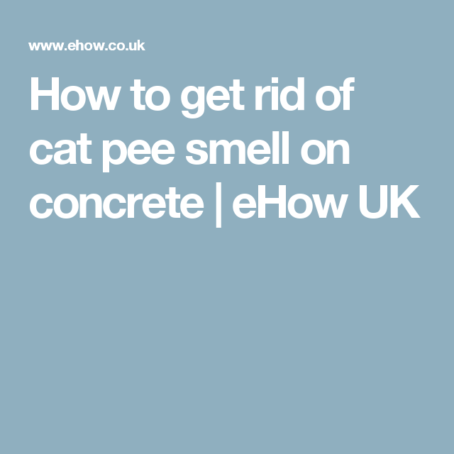 How To Get Rid Of Cat Pee Smell On Concrete