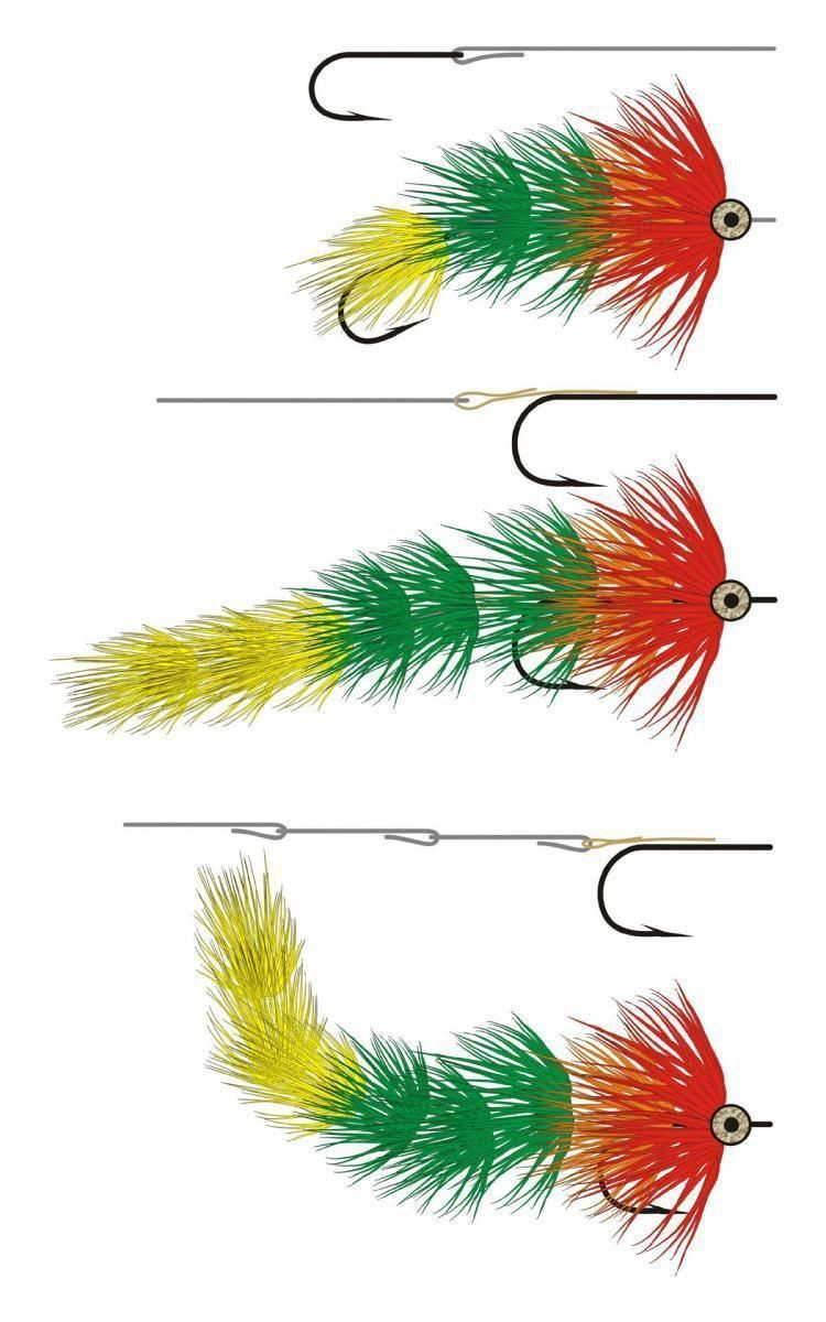 Tips on Fly Fishing Fly fishing basics, Fly fishing for