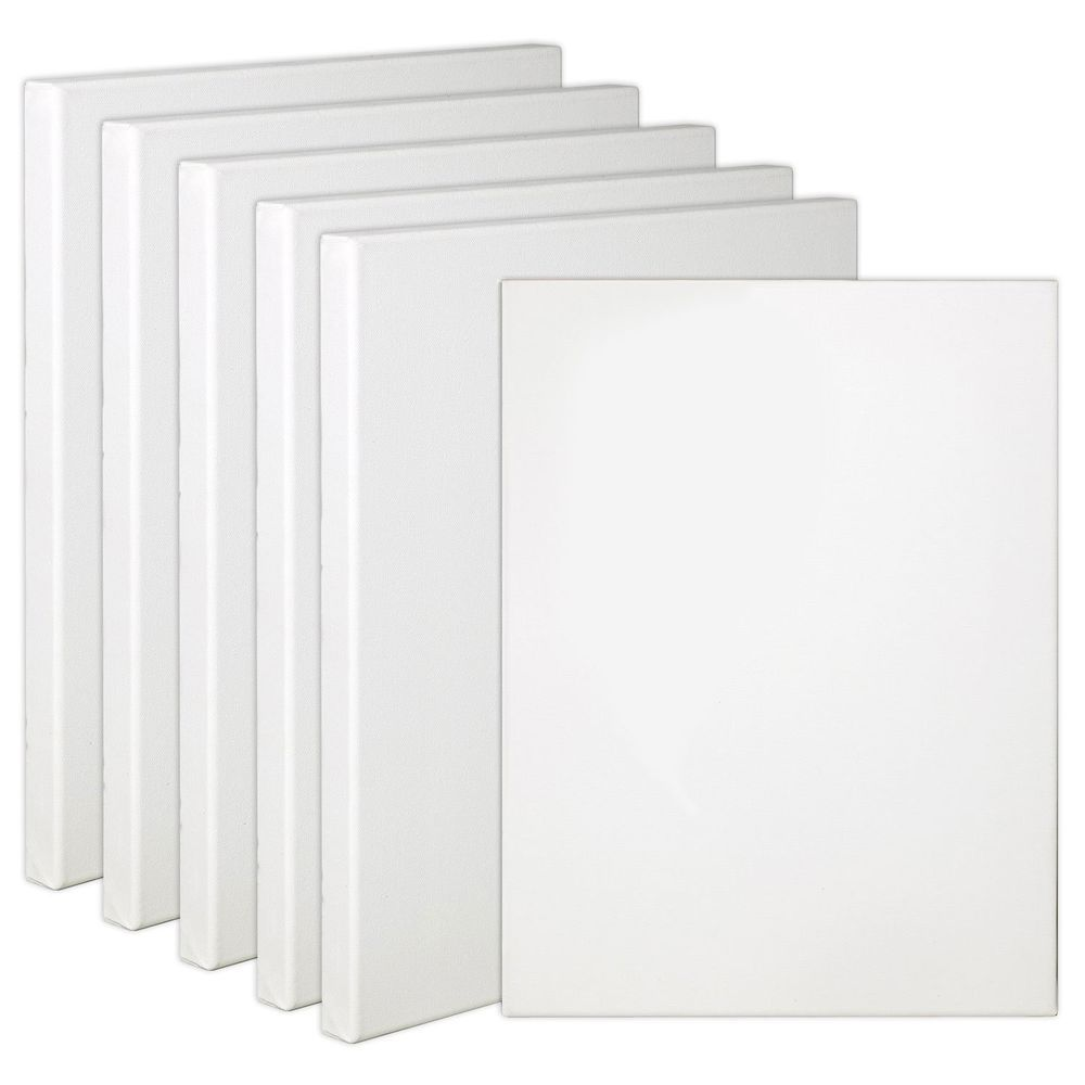 "6-Pack Quality Stretched Canvas,16x20"" 12 Oz. Primed Gesso.Student, Prof. Artist"