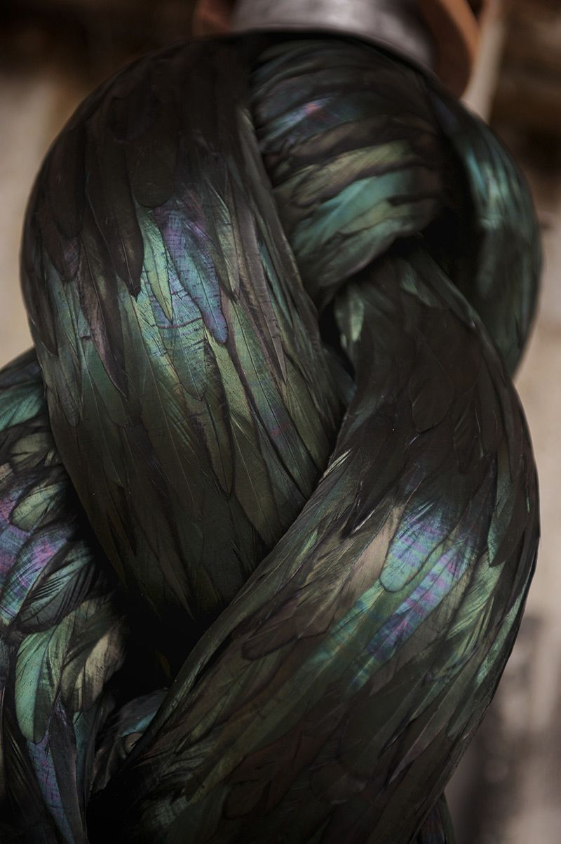 New Feather Sculptures by Kate MccGwire
