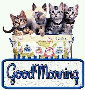 guten morgen , ich wünsche euch einen schönen tag - http://www.1pic4u.com/blog/2014/06/13/guten-morgen-ich-wuensche-euch-einen-schoenen-tag-692/