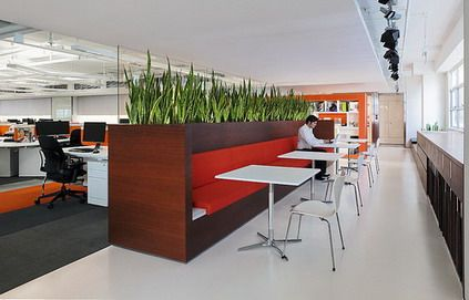 plants in casework / integrated greenery / partition | interior