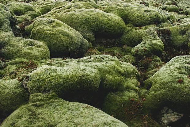Mr and Mrs Globe Trot: Hiking, Rocks, and Icebergs - Iceland