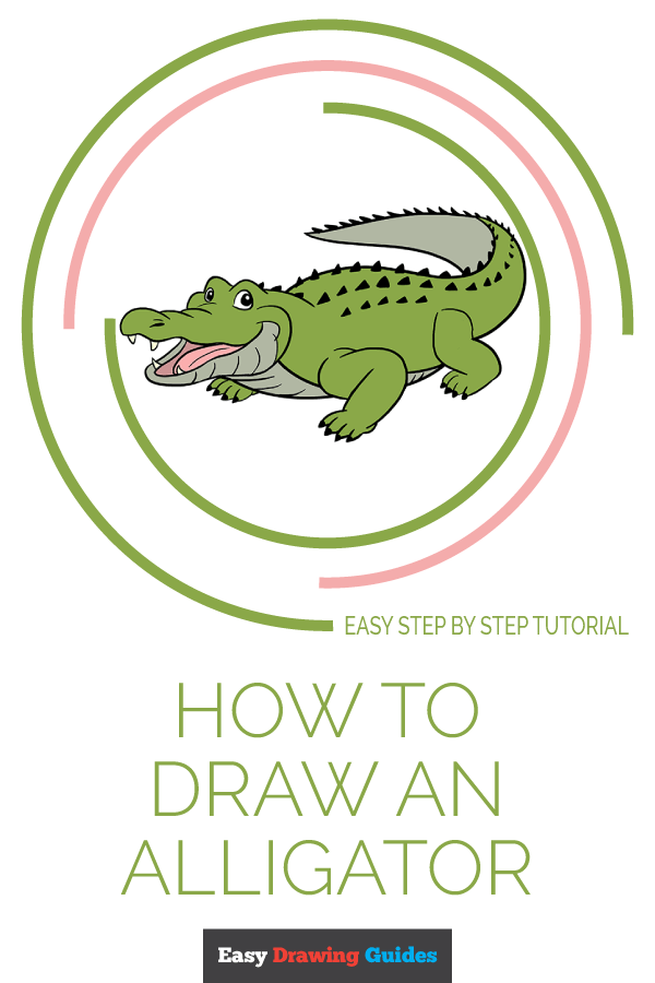 How to Draw an Alligator | Easy drawings, Drawing tutorial ...