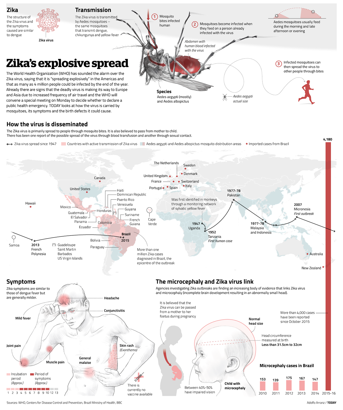 Infographic page about Zika's virus for Today newspaper