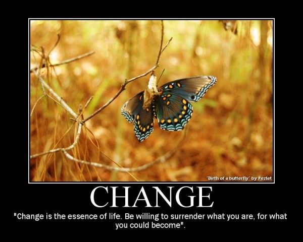 accepting the change :)