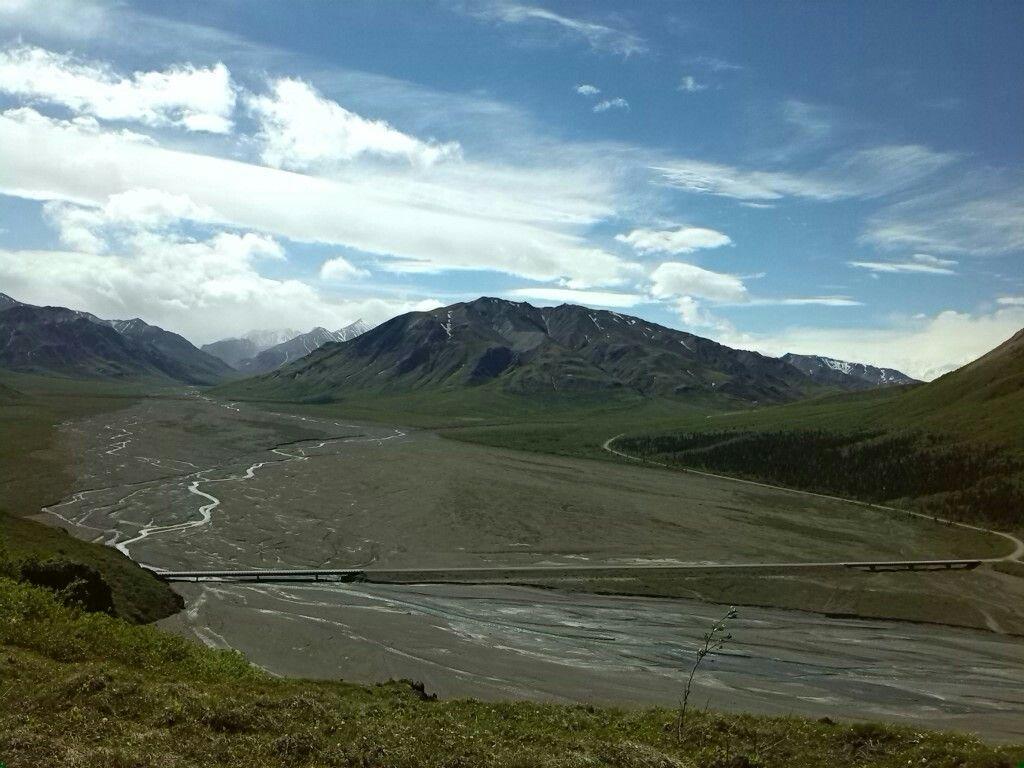 Denali Nationalpark - Alaska