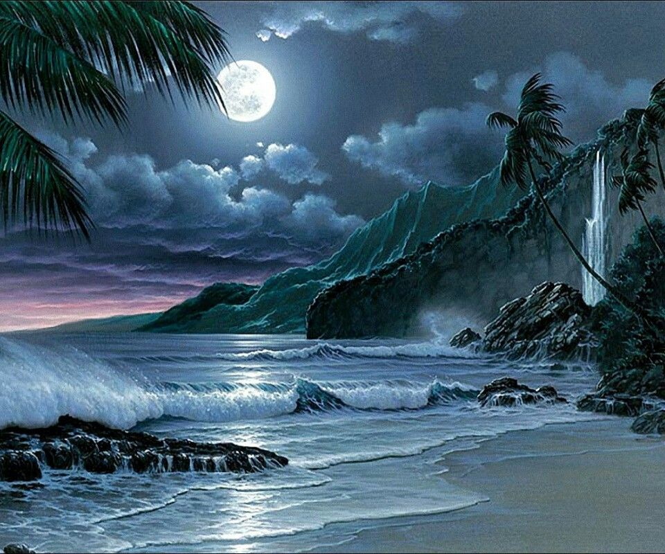 Night time at the beach | Landscapes | Full moon night ...