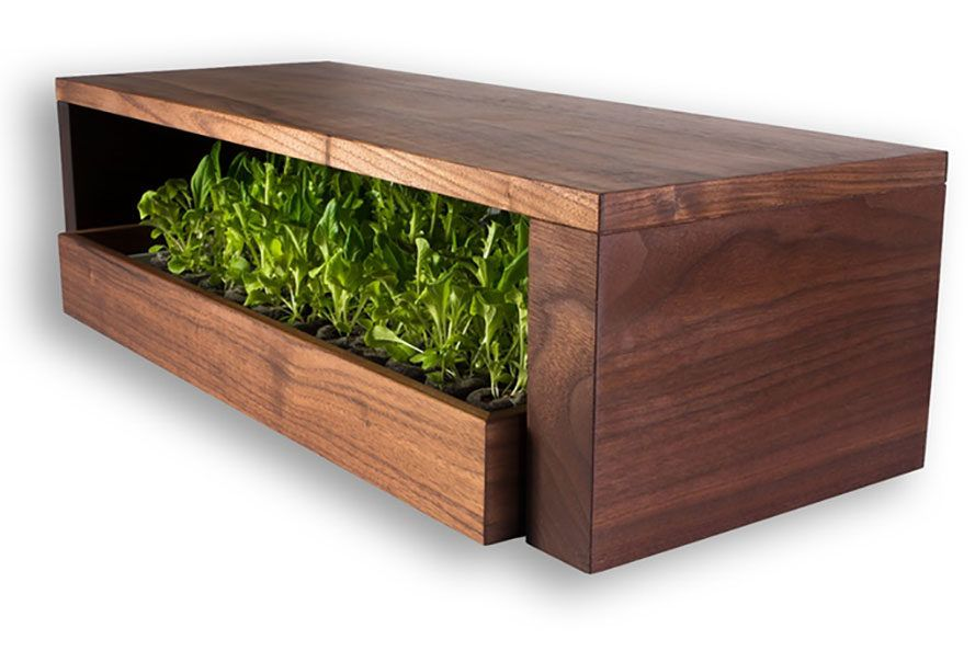 Grow Bar Sprouts Microgreens Anywhere With Built In Bluetooth And