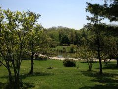 ADAY.org – Picture Today Inspire Tomorrow -  Nice view of the pond in Humber College's Arboretum from on top of a hill.