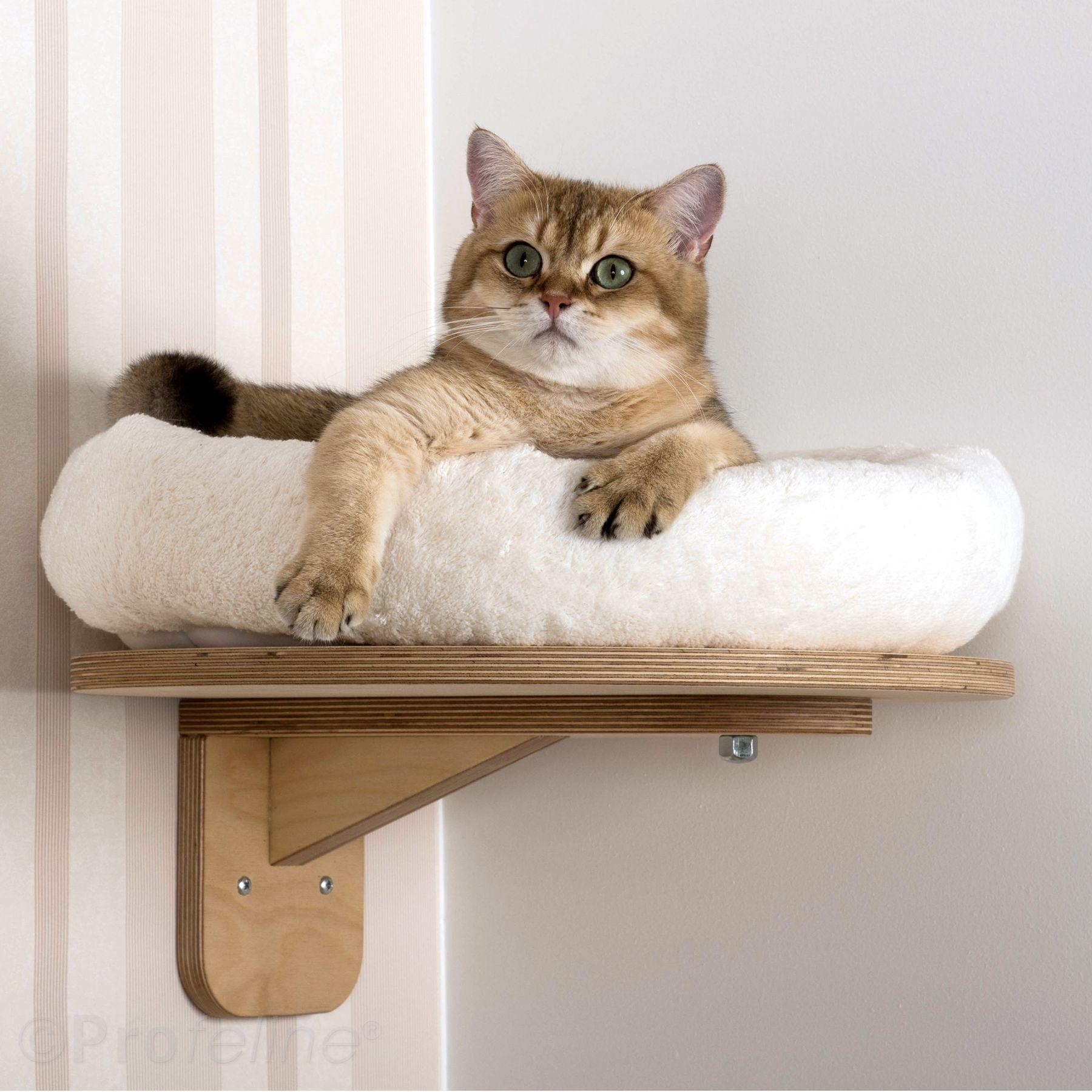 wall lounger with cat bed wandliege mit katzenbett climbing wall for cats katzen katzen. Black Bedroom Furniture Sets. Home Design Ideas
