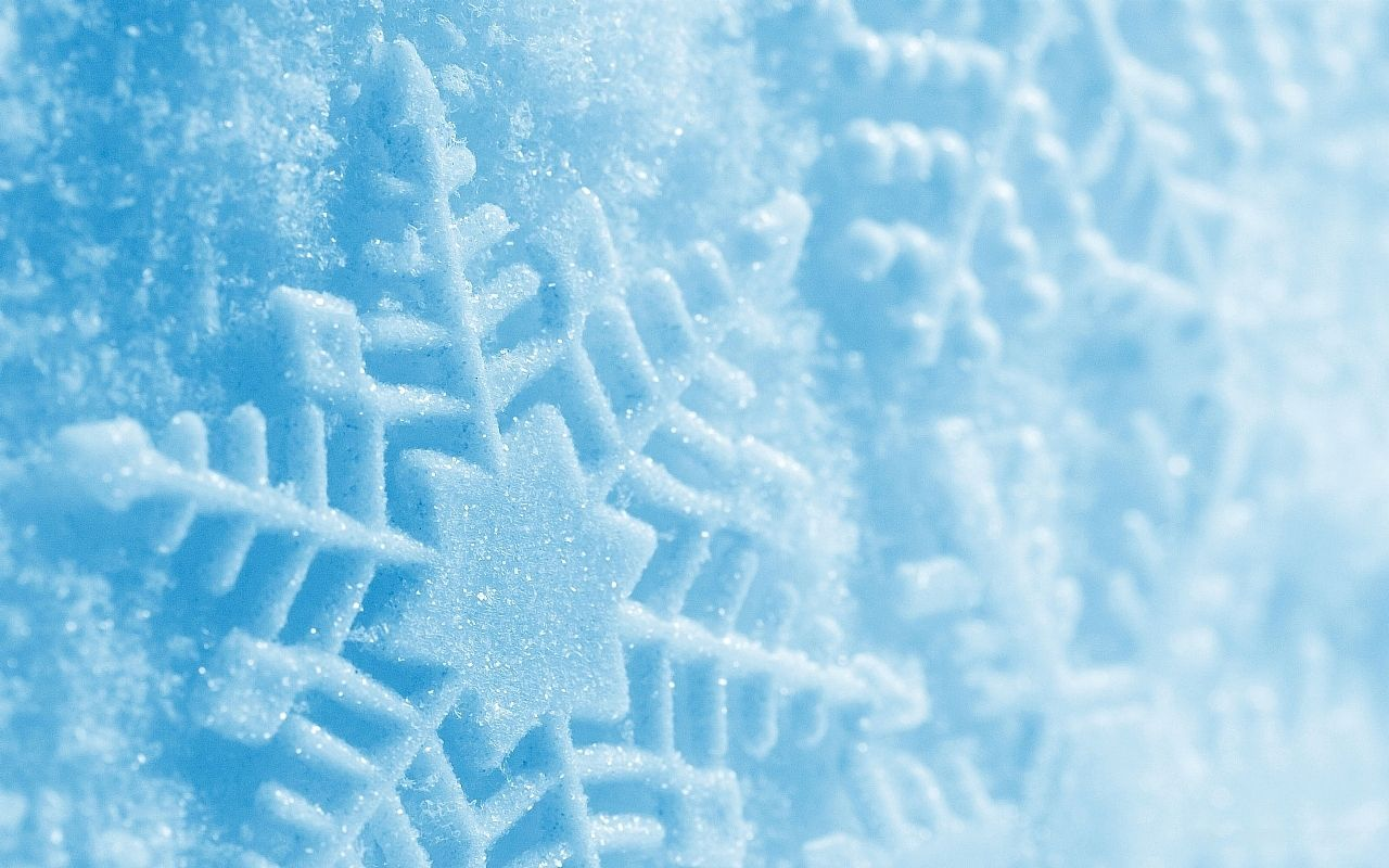 Blue Snowflower Passi Wallpapers Cute Background
