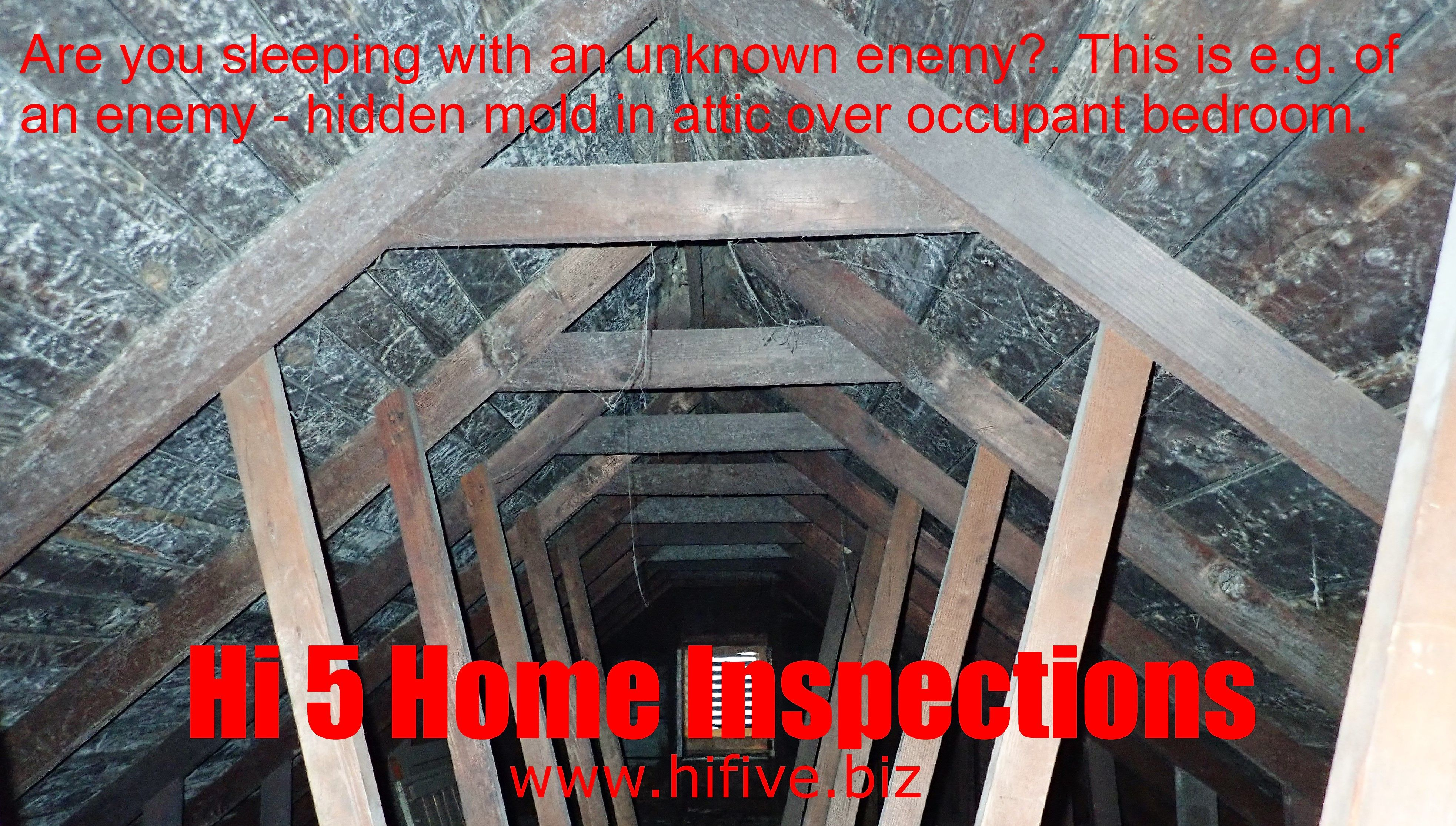 Hi 5 home inspections in 2020 home inspector home