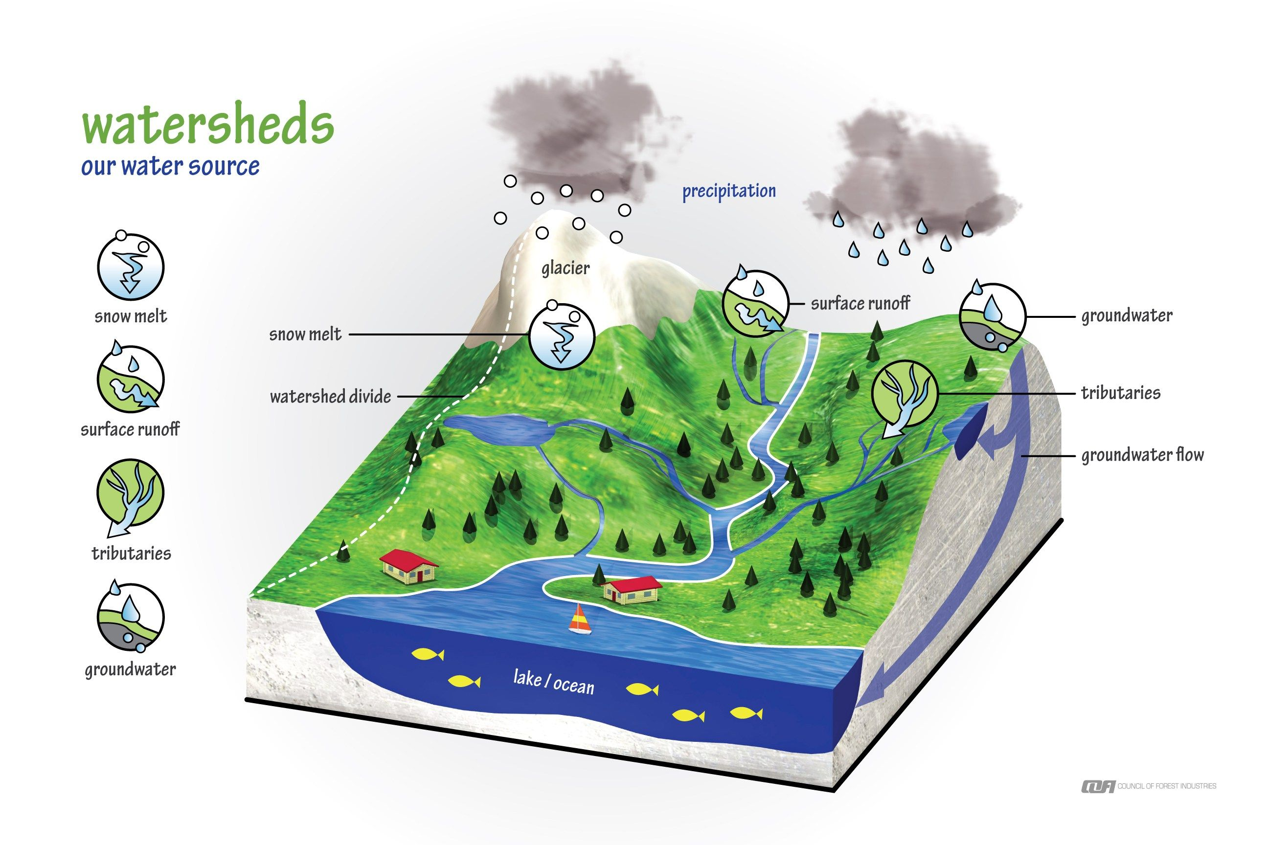 Pin By Chelsea Duty On Environmental Science