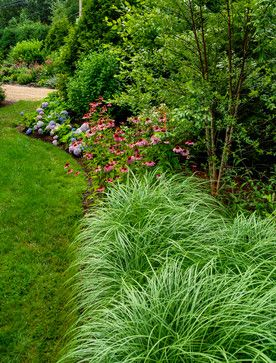 Dwarf Grasses Landscaping This is a great ornamental grass that we use a lot it is pennisetum this is a great ornamental grass that we use a lot it is pennisetum alopecuroides hameln it is a dwarf grass that maxes out around 25 pinterest workwithnaturefo