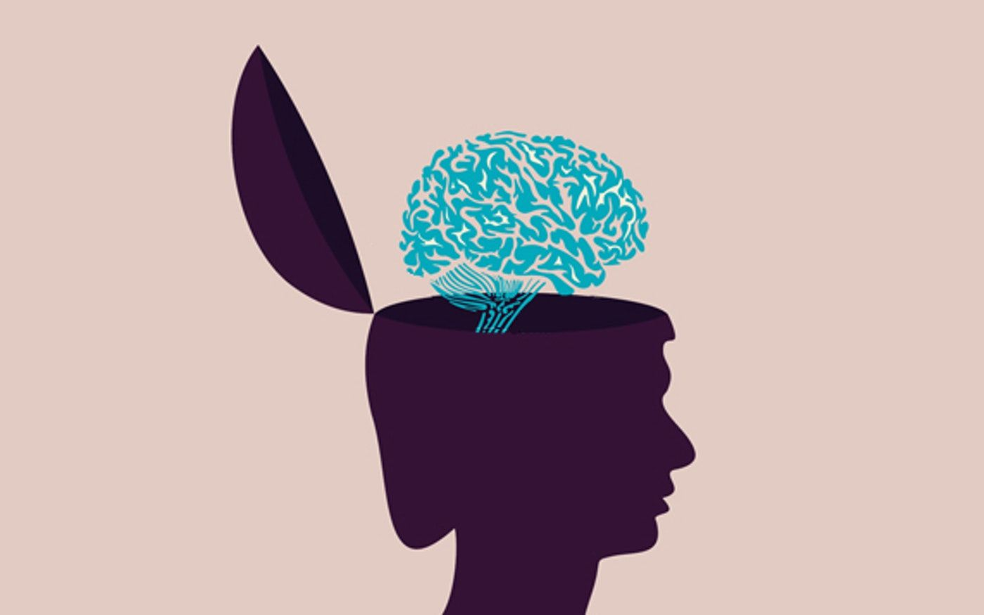 How To Teach Your Kids About The Brain