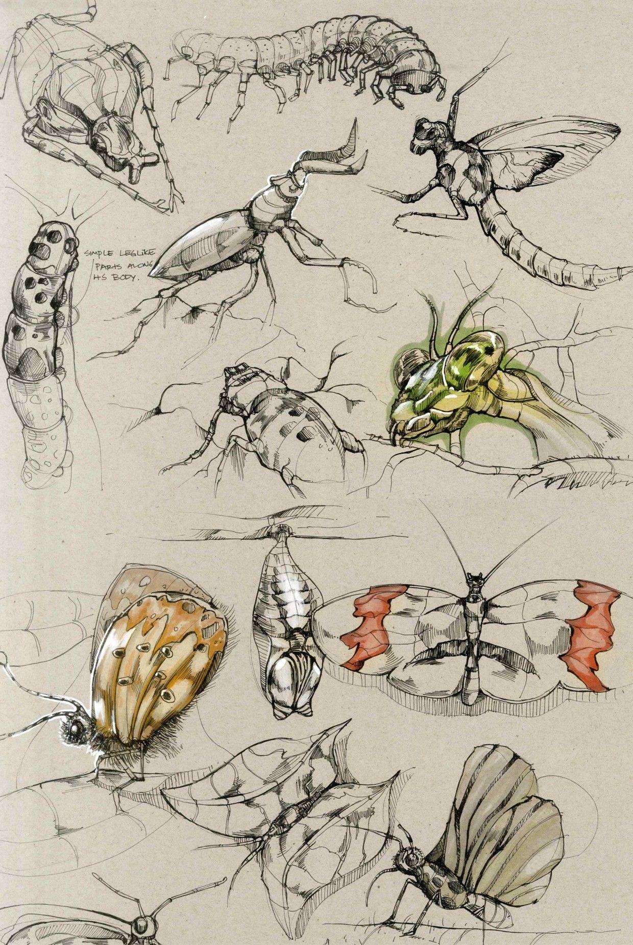 Sketches on Behance   Art Inspiration: Animals   Pinterest   Dibujo ...
