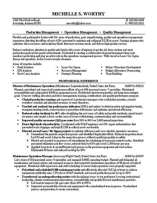 Professional Resume Examples For Management Position
