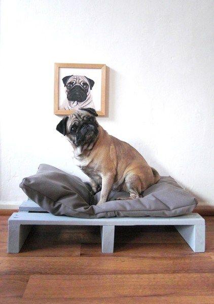 2. Hund: Schlafplätze - Hundebett Hunde Katzen Kissen Loft Design ...