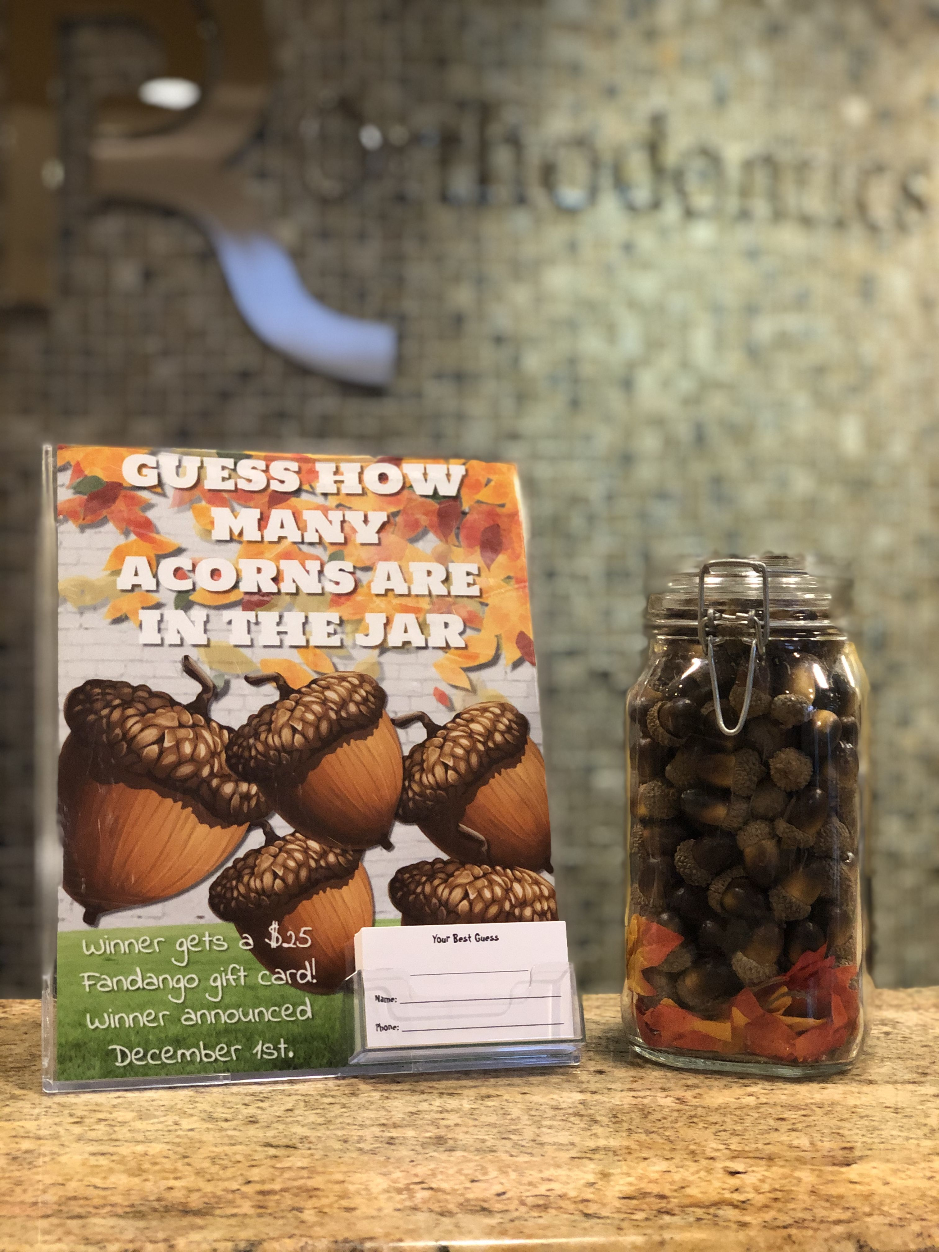 This Month S Patient Contest Many Acorns Are In The