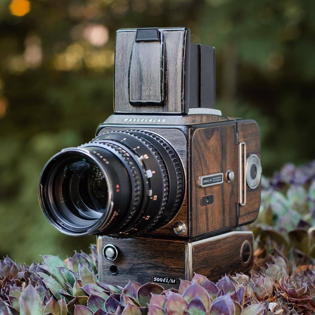 Customized Hasselblad 500 EL/M with ziricote veneer
