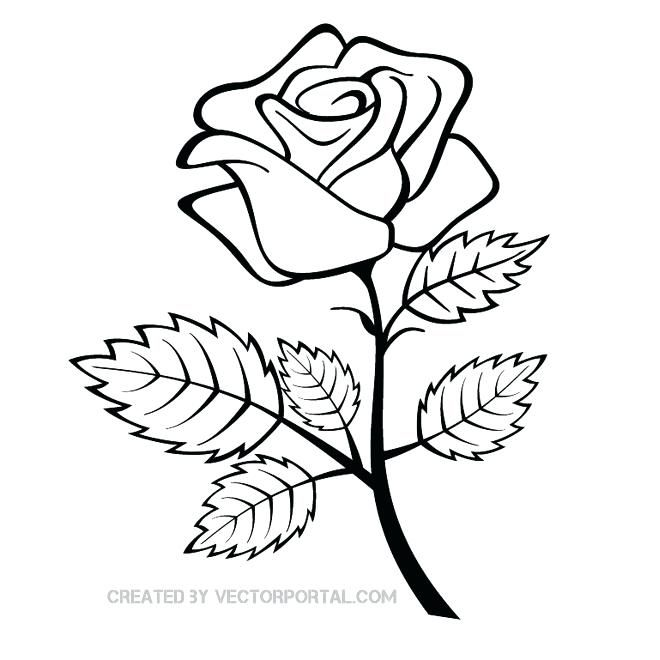 Marvelous Decoration Rose Clipart Peacock Fairy Art Digital Image Download Rose Outline Rose Coloring Pages Flower Drawing