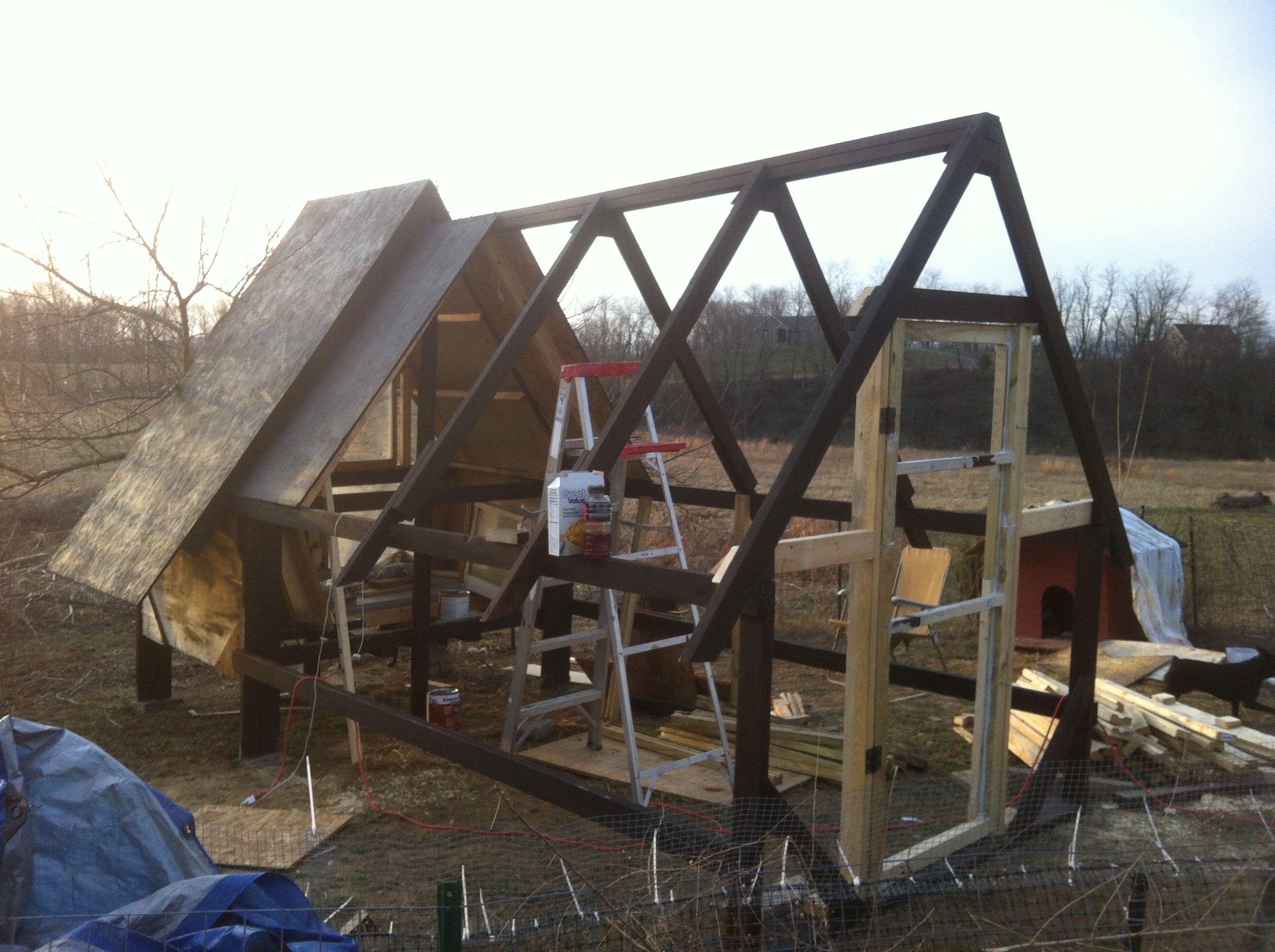 Working on my bird house!