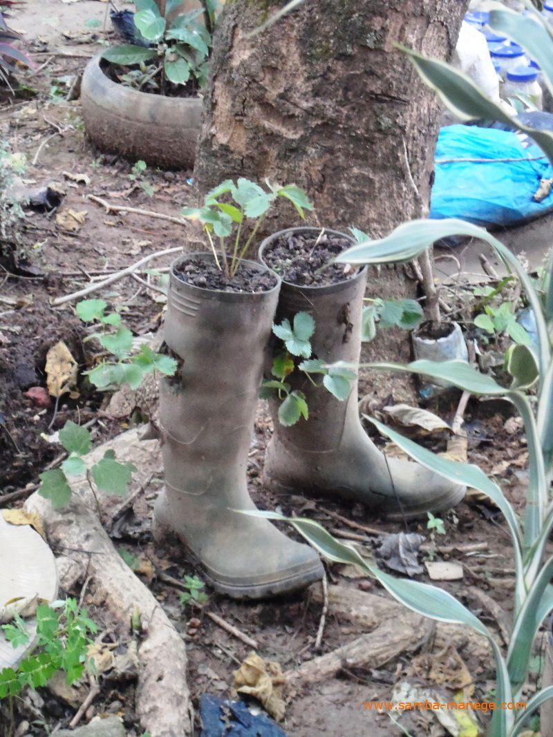 Botas como vasos de plantas!