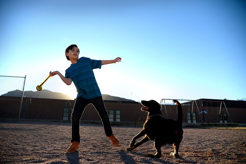 Colorado Prison Trained Dog Turned Autistic Boy S Life Around