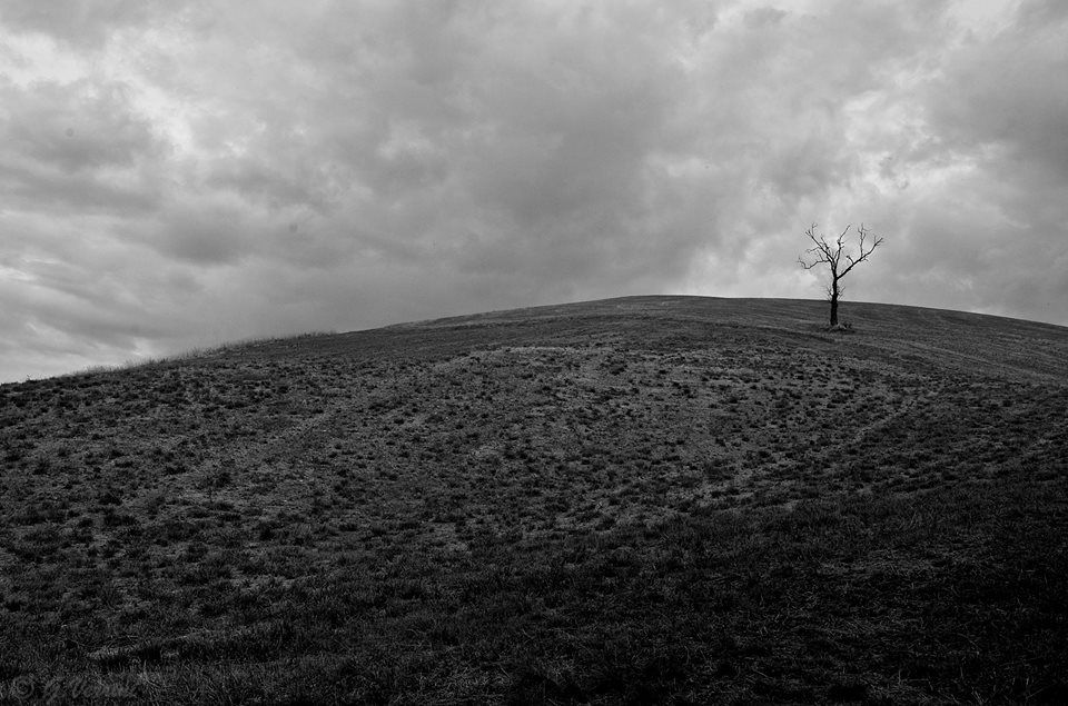 SELECTION OF THE DAY by @ExpoFineArt > Titolo > Spleen > Torre oche (MO) - 2014 > Photo © Gabriella Verrini > #Expo #FineArt #Photography > #Landscape