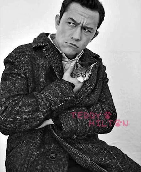 Joseph Gordon-Levitt Won't Reveal His Sexual Orientation But He WILL Cuddle Kittens!