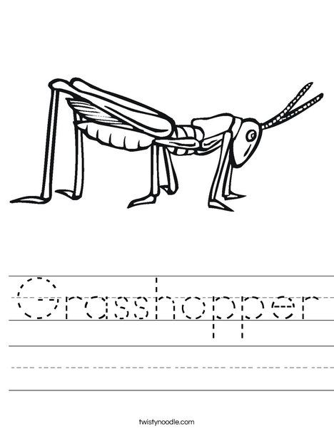 Grasshopper Worksheet Easy Coloring Pages Worksheets Insect Life Cycle