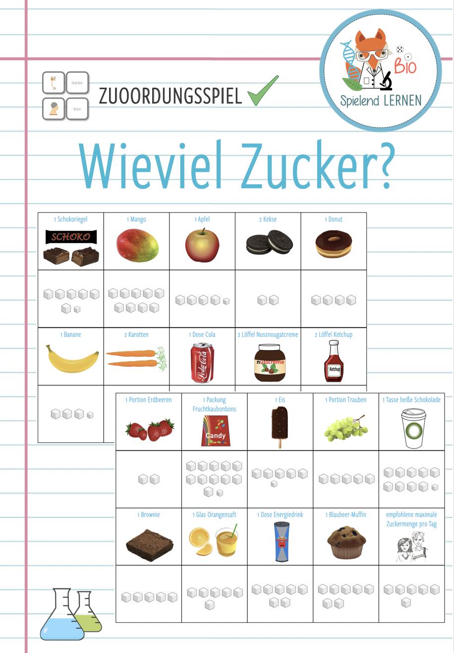 Zucker Unterrichtsmaterial Grundschule