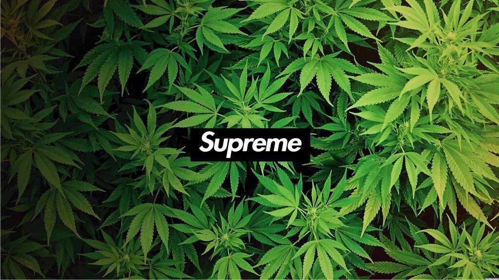 Supreme-Camp-Cap | Tumblr  |Supreme Marijuana Backgrounds