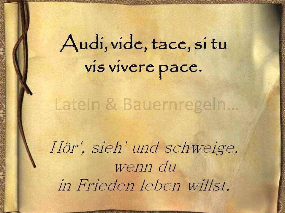 Lateinische Sprichwörter Recht | mein leben zitate