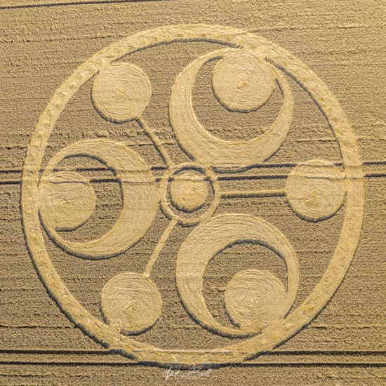 Pin on crop circle magnificance
