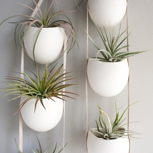 3 Tier Hanging Planters