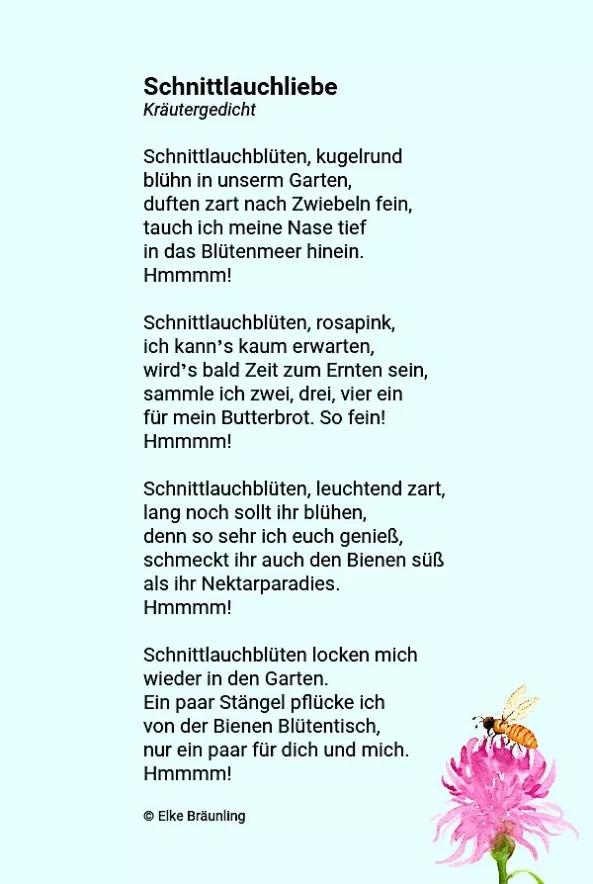 Schnittlauchliebe Geschichtensammlung Kindergedichte Gedichte Fur Kinder Gedicht Sommer