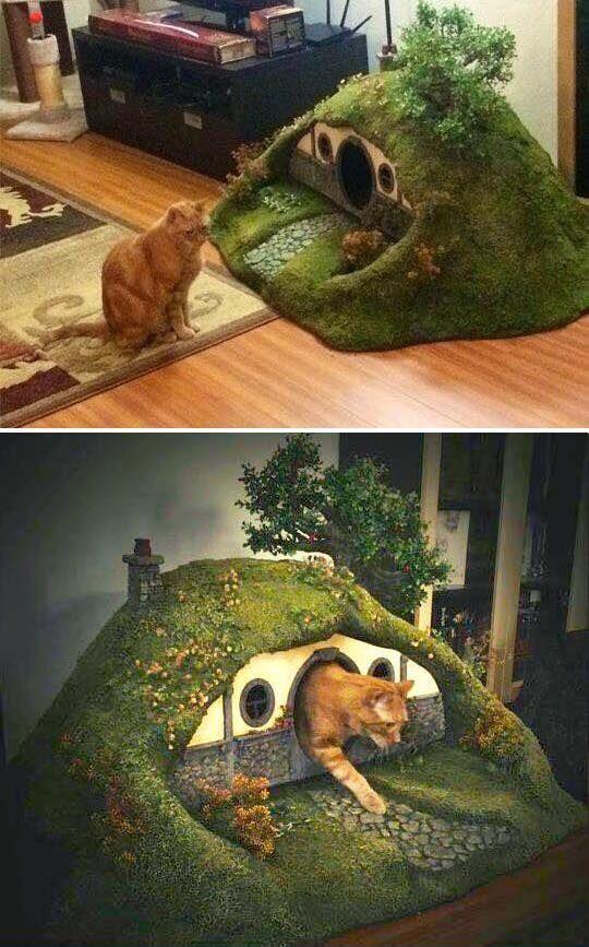 Cat Hobbit House Cat Cathouse Cat Cathouse Hobbit House Cat Cathouse Cathousecat Hobbit House In 2020 Cat Playground Pets Cat Room