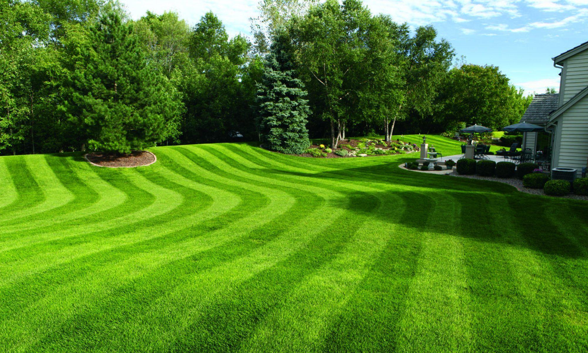 Get the best gallatin tn lawn fertilization service lush