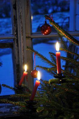 Jouluna elävät kynttilät