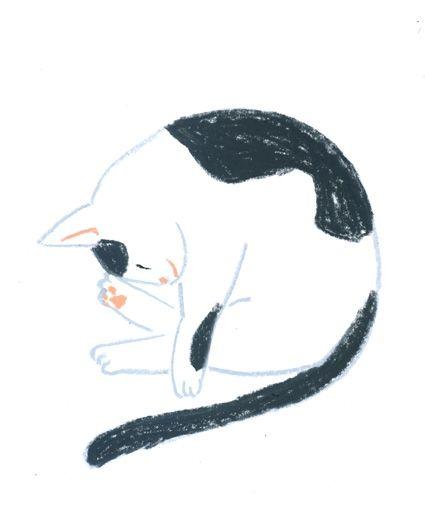 Furutani Michiko - 記事の画像