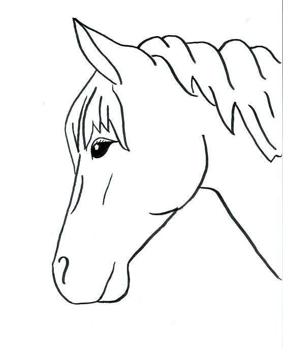 Horse Profile Drawing Easy Horse Drawing Horse Coloring Pages Horse Coloring