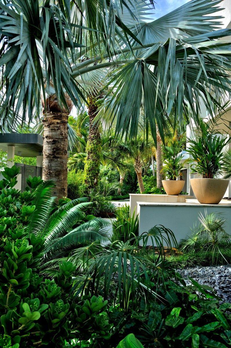 Tropical Garden By Kartika Wulandari On Sophisticated Garden