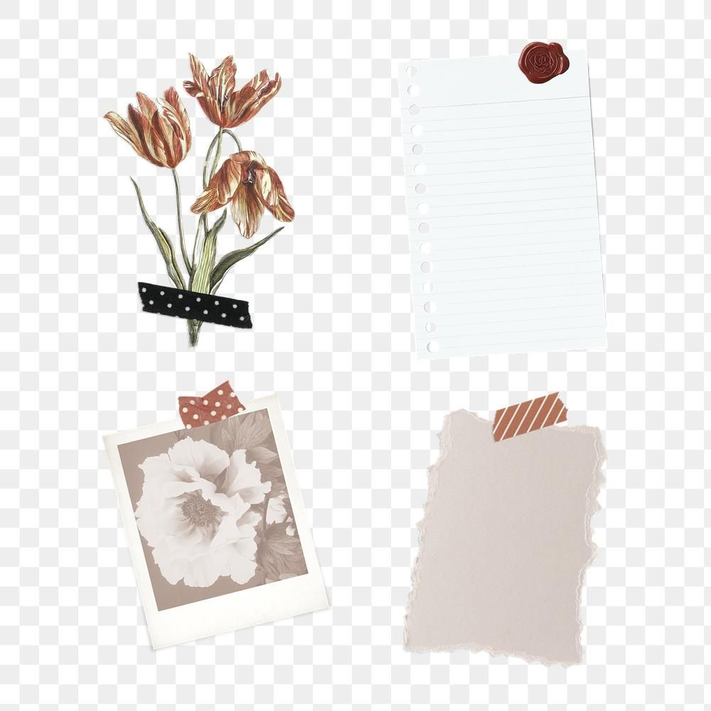 Floral Feminine Collage With Washi Tape Design Element Premium Image By Rawpixel Com Marinemynt Abstract Paper Free Hand Drawing Aesthetic Stickers